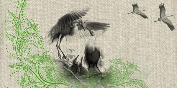 Животные и птицы в орнаментах